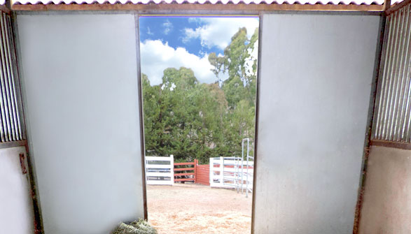 12x12 matted, generously bedded stalls with private runs.